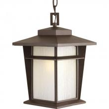 Progress P6521-20WB - One Light Antique Bronze Etched Seeded Glass Hanging Lantern